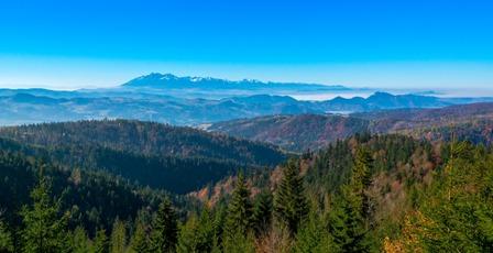 montagne verdoyante sommets enneigés